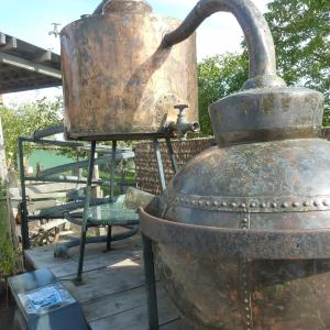 Traditional Crafts of the Somerset Levels