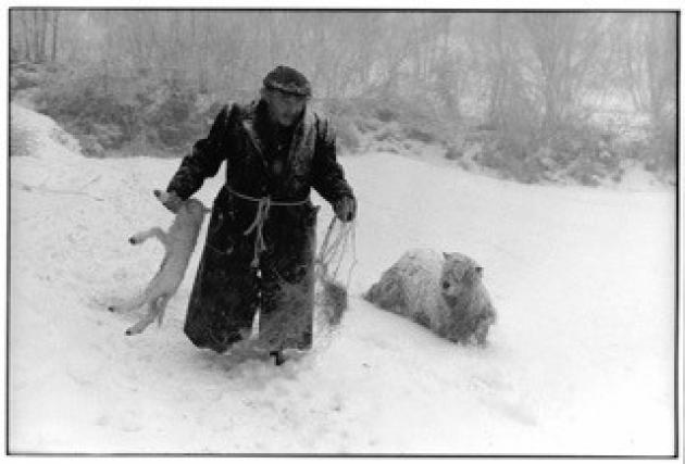 A Chronicle of Country Life – the Photographs of James Ravilious