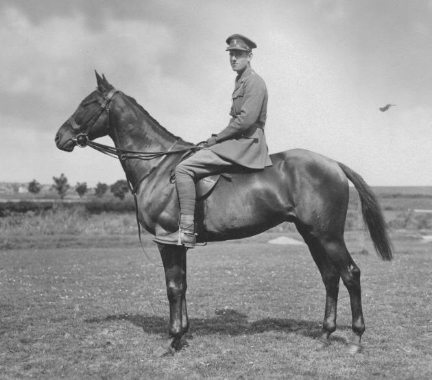 General Sir Richard McCreery: the Last Great Cavalryman